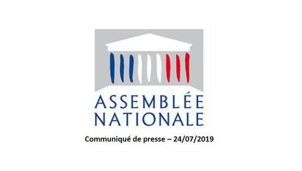 Les groupes Gauche Démocrate et Républicaine, La France insoumise, et Socialistes et apparentés ont déposé ce jour un recours pour contester devant le Conseil constitutionnel le PLTFP